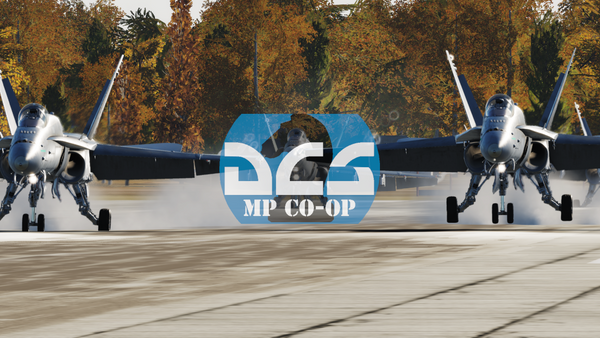 The DCS MP CO-OP Group
